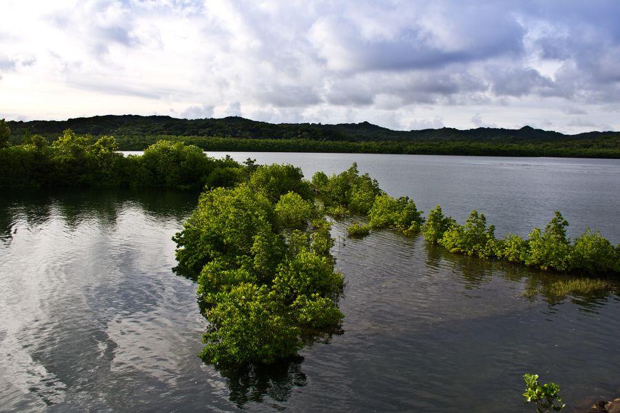 Koror Island Palau T88FC