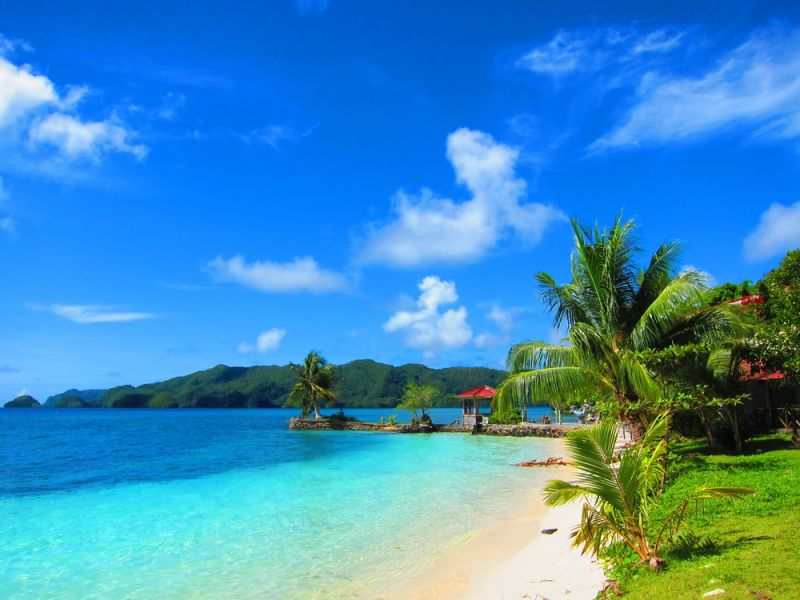 Koror Island Palau T88AK DX News