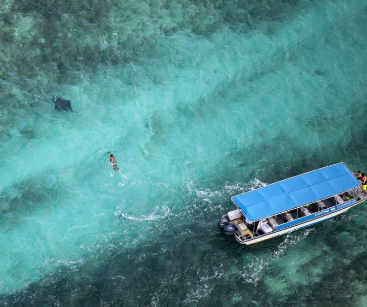 Koror Island Palau T88VW
