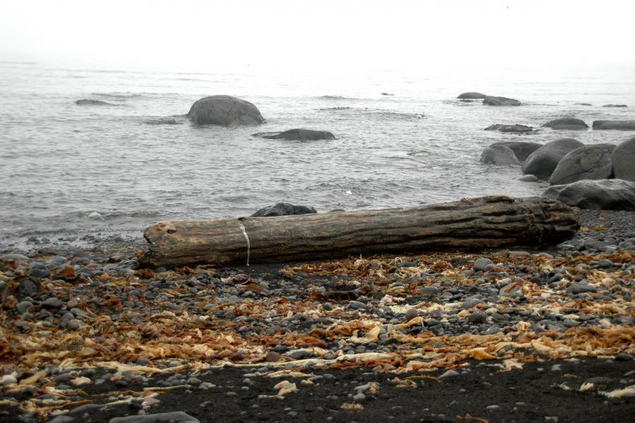 Kunashir Island Kuril Islands RA0/OG2K DX News