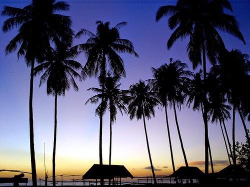 Laut Island YF1AR/7 DX News
