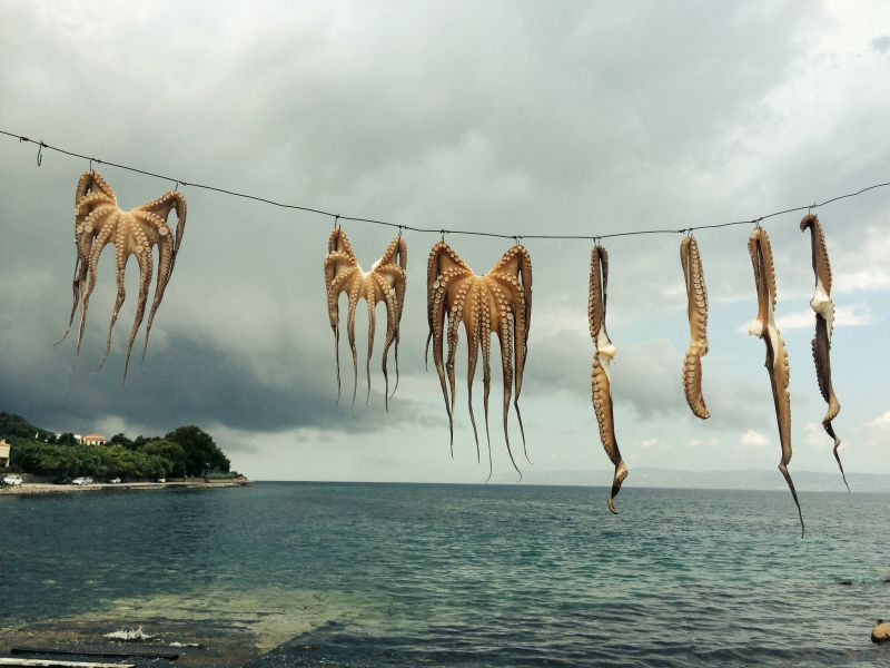 Lesbos Island SV8/DK3SJ DX News
