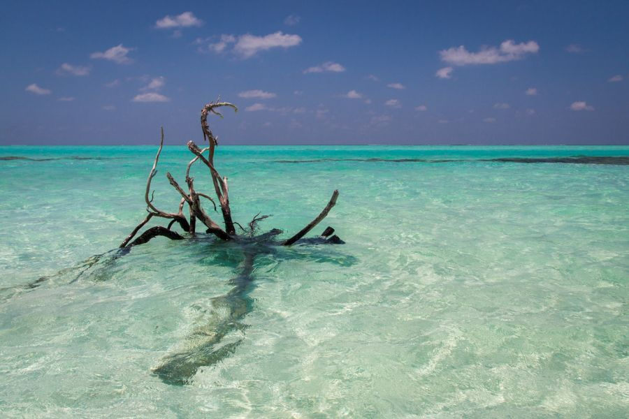 Maayafushi Island Maldive Islands 8Q7UX Tourist attractions