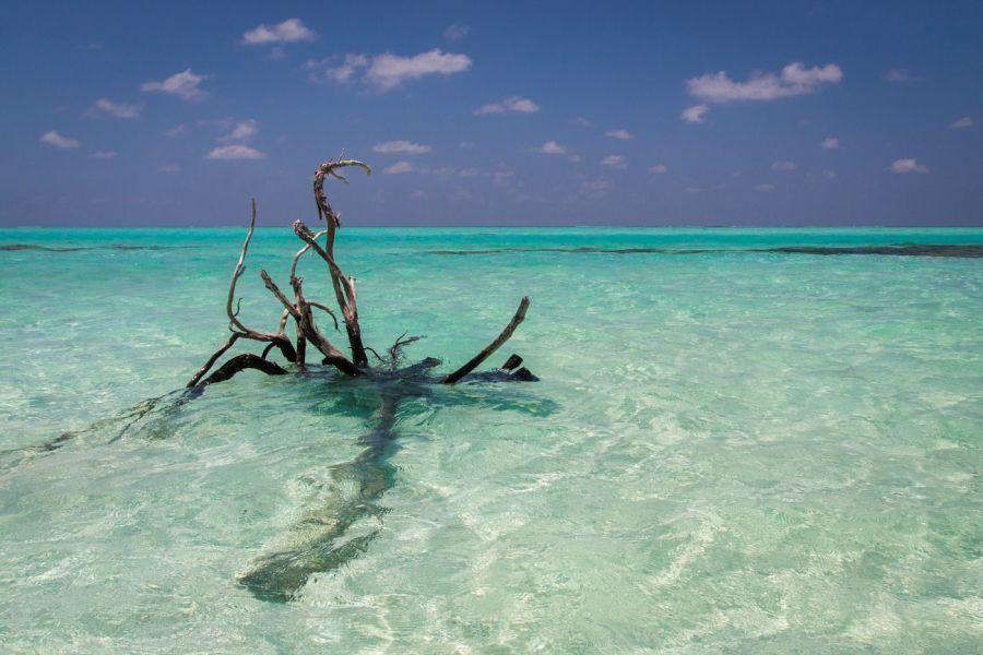 Остров Маафуши Мальдивские острова 8Q7UX Туристические достопримечательности