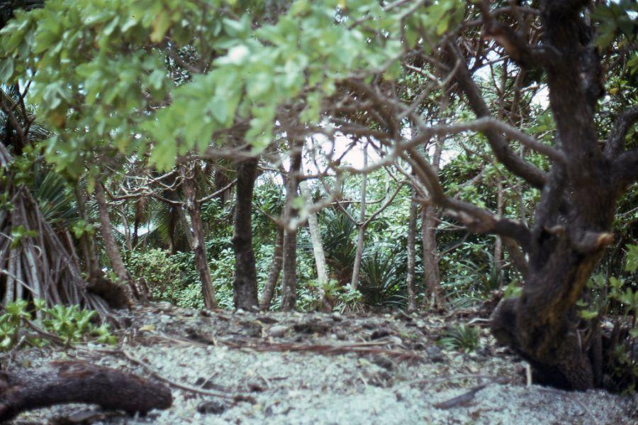 Majuro Atoll Marshall Islands V73D Tourist attractions