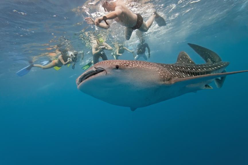 Maldives 8Q7BI Tourist attractions