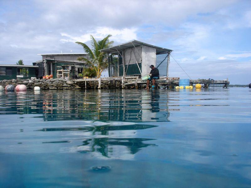 Manihiki Island E51AMF Tourist attractions spot Pearl Farm.