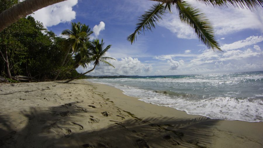 Martinique Island FM/N7BG FM/WT4BT TO4OC TO6ABM DX News Beach.