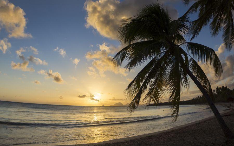 Остров Мартиника FM/N7BF FM/WT4BT TO4OC TO6ABM