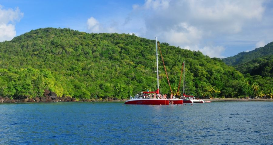 Martinique Island TO5Y DX News