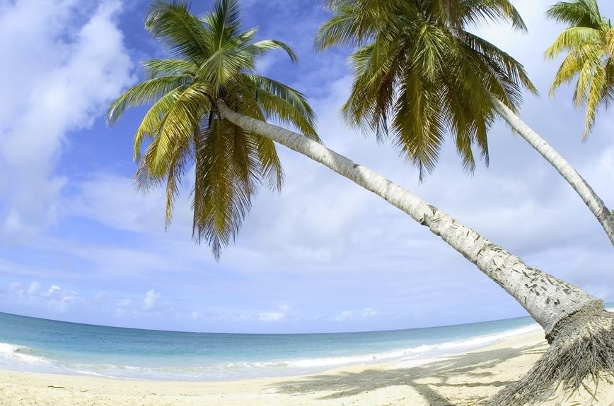 Остров Мартиника TO90IARU DX Новости