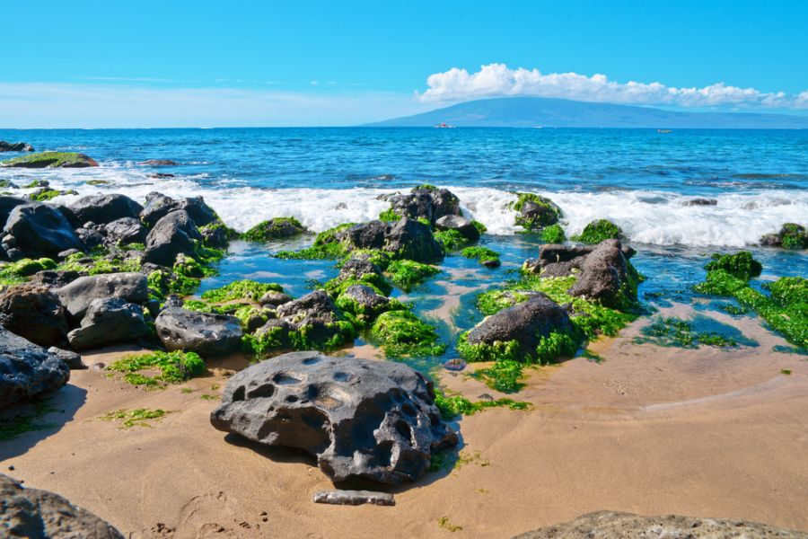 Maui Island KH6/G4BUO Tourist attractions spot Rocks and sand along the Bay.