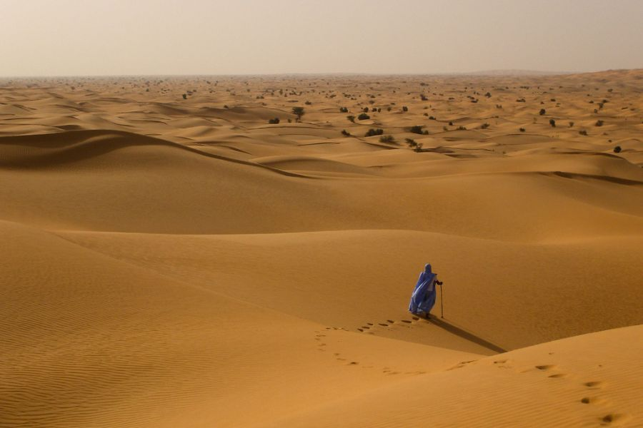 Mauritania 5T0WP DX News Invaluable man in the desert.