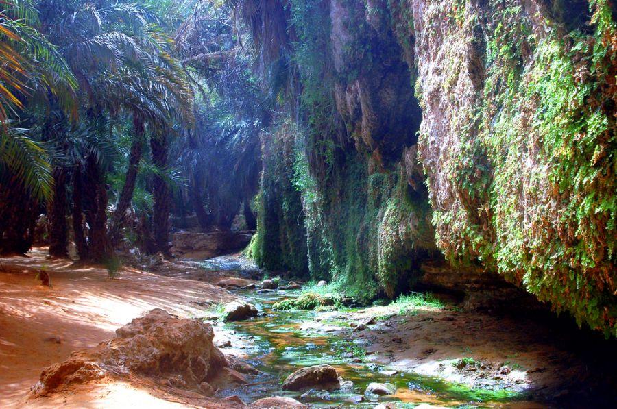 Mauritania 5T2AI Oasis in the desert Sahara.