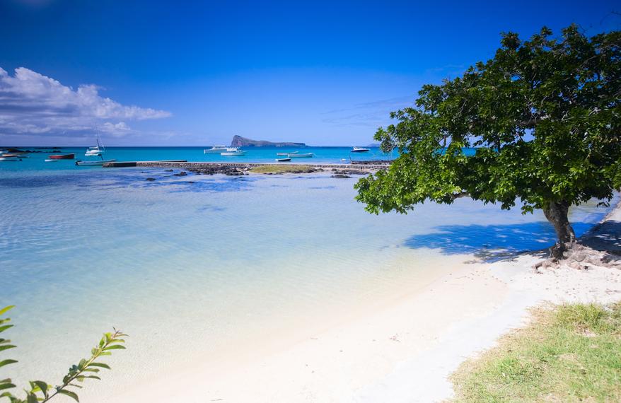 Mauritius Island 3B8HA 3B8MU DX News