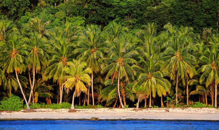Mentawai Islands YD4IRS/5 Tourist attractions spot
