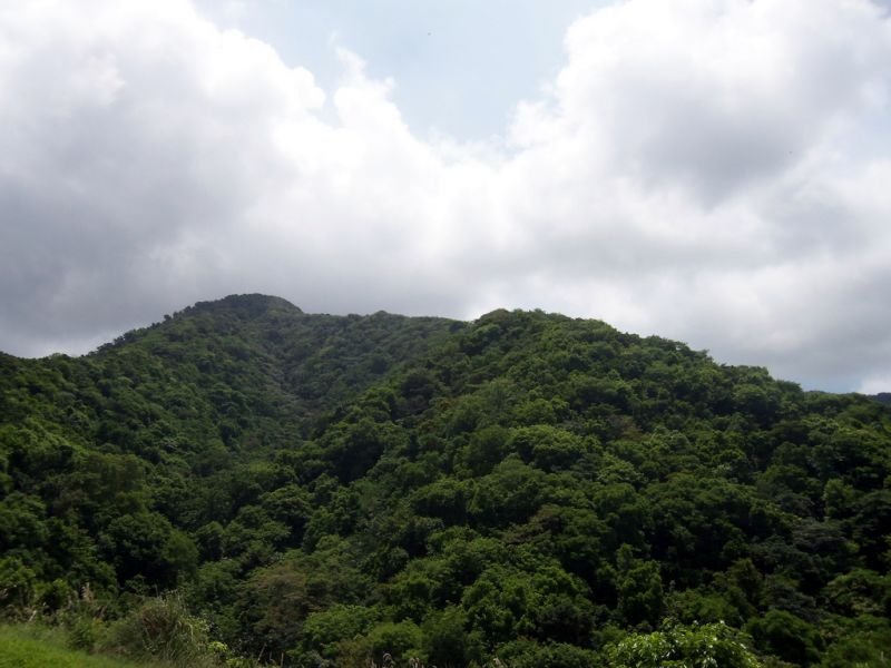 Montserrat Island VP2MRF