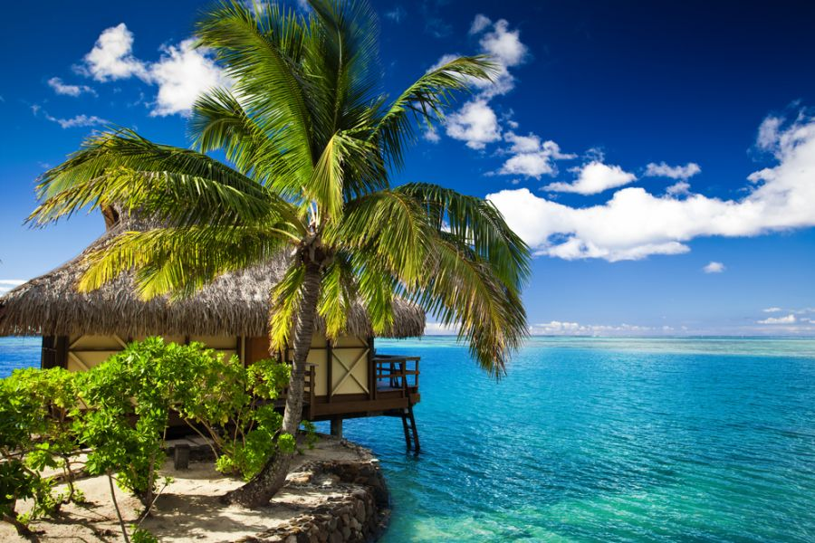 Moorea Island French Polynesia FO/W7YAQ Tourist attractions spot Tropical bungalow and palm tree.