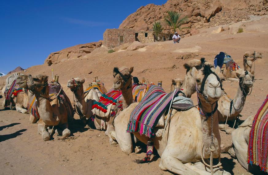 Morocco CN2Z