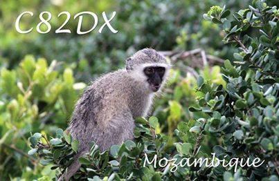 Мозамбик C82DX QSL