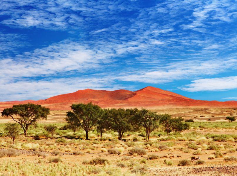 Намибия IARU 2015