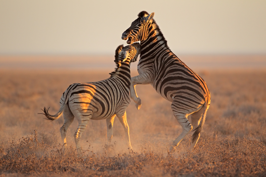 Namibia V5/DL3DXX Tourist attractions