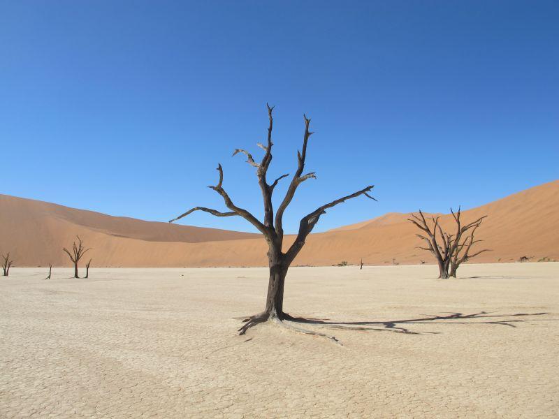 Namibia V5/DJ5IW V5/DJ7JC V5/DJ9RR V5/DJ2HD V5/DJ2LS V5/DJ8VC V5/DL9NDS DX News