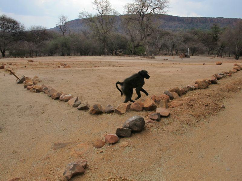 Намибия V5/DJ5IW V5/DJ7JC V5/DJ9RR V5/DJ2HD V5/DJ2LS V5/DJ8VC V5/DL9NDS Туристические достопримечательности