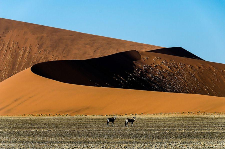 Namibia V5/OE3SZA