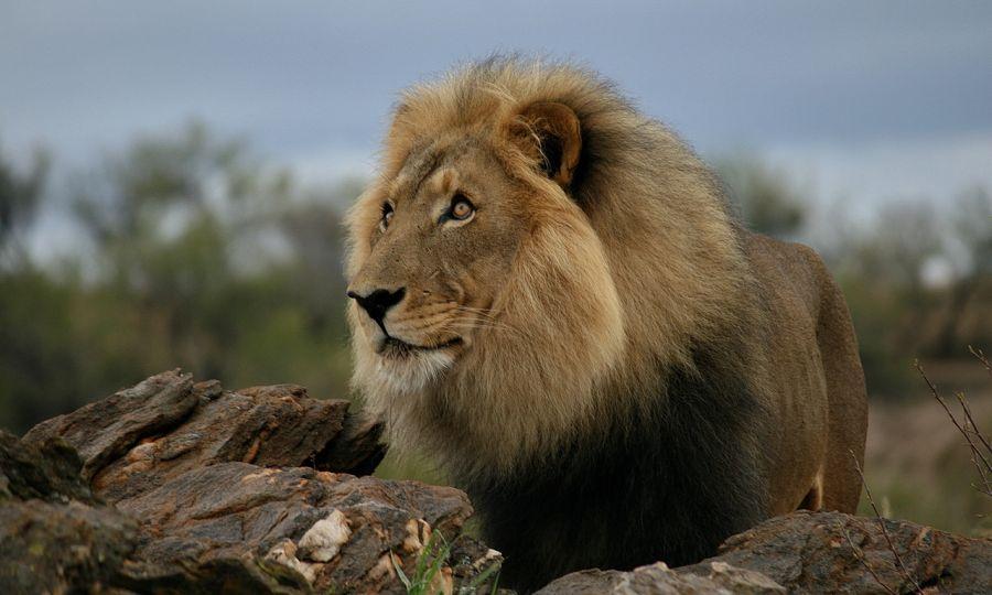 Намибия V55HQ Туристические достопримечательности