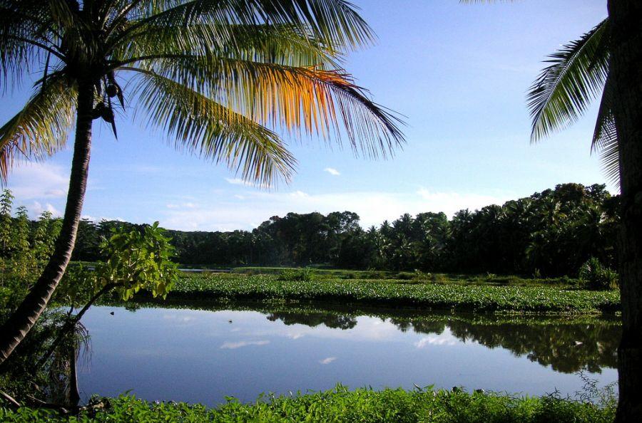 Науру C21DA DX Новости Пресноводное озеро.