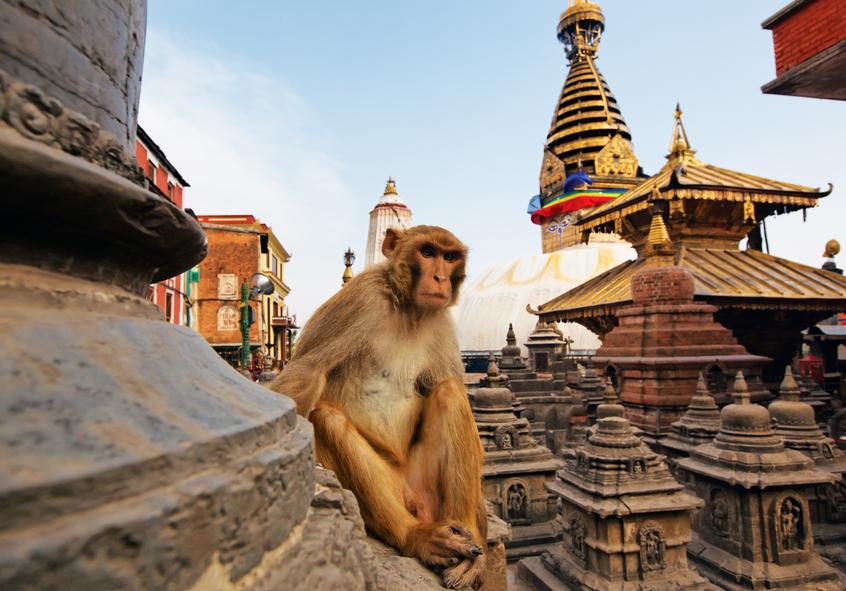 Непал 9N7AD Туристические достопримечательности