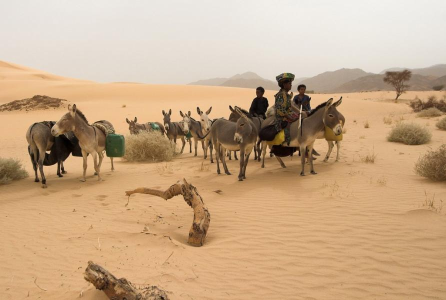 Niger 5U7RK DX News