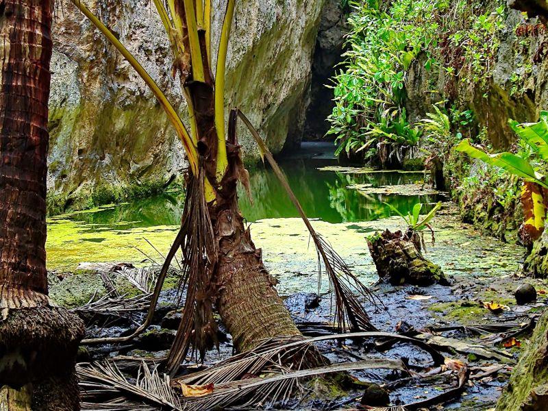 Niue Island E6AB DX News
