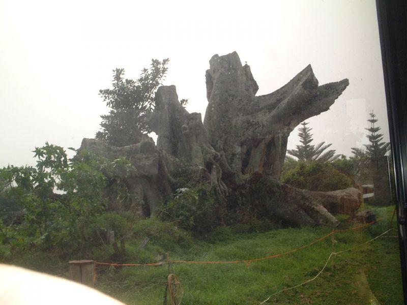 Norfolk Island VK9/G7VJR Tourist attractions