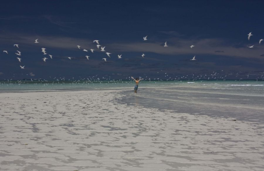 Остров Нуси Бе Мадагаскар 5R8BC