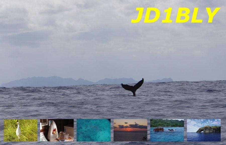 Остров Титидзима JD1BLY QSL