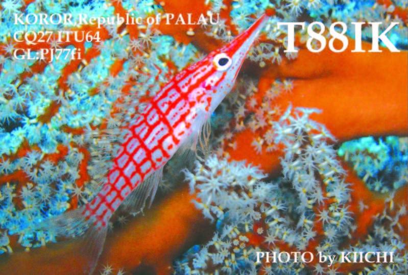 Koror Island Palau T88IK QSL