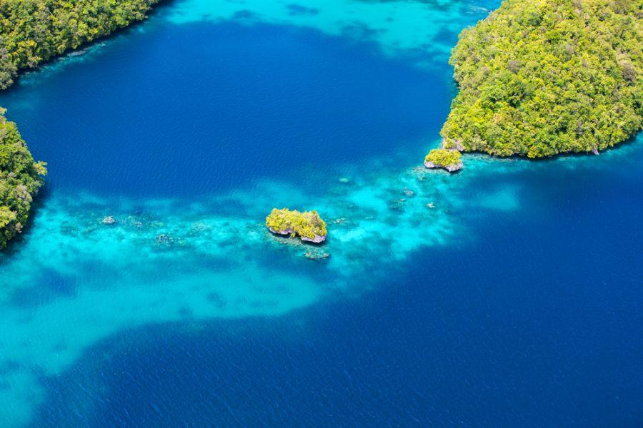 Palau T88RY