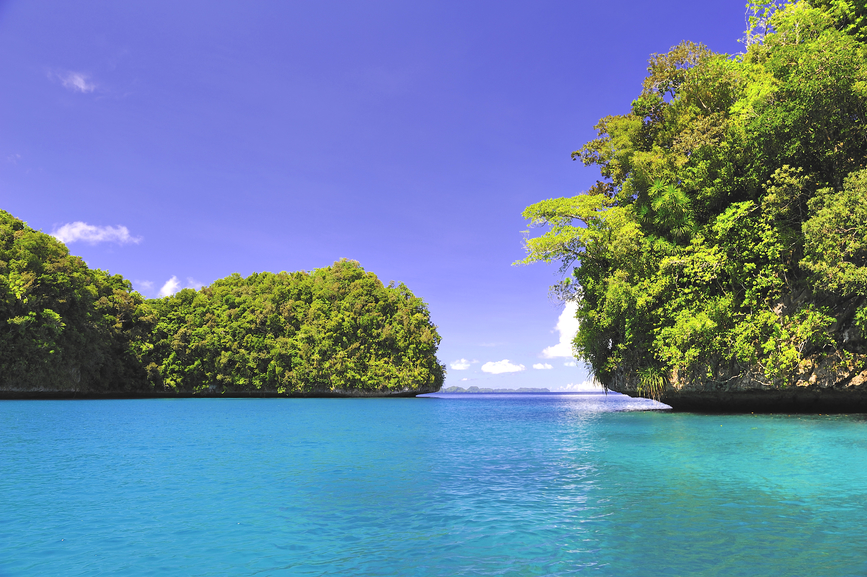 Palau Islands T88YA DX News