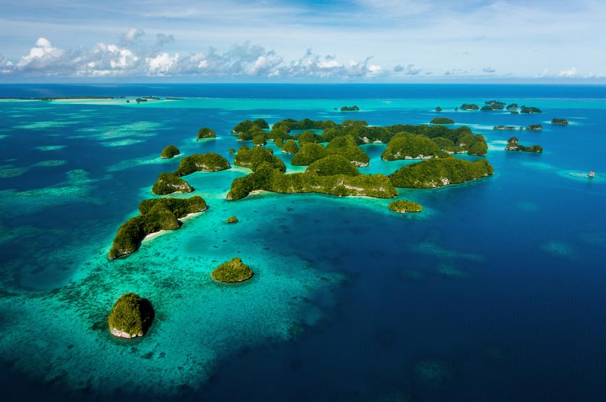 Palau T88YD