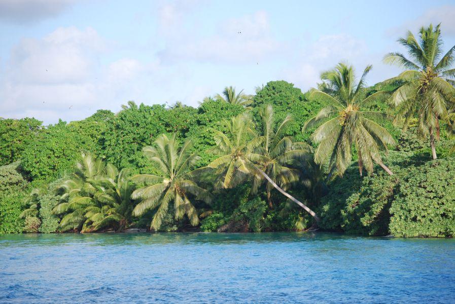 Atoll Palmyra K5P DX News