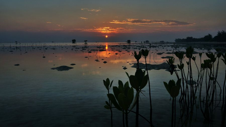 Pari Island YF1AR/0 Tourist attractions spot