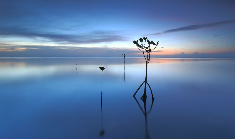 Pohnpei Island V63IM Sunset.