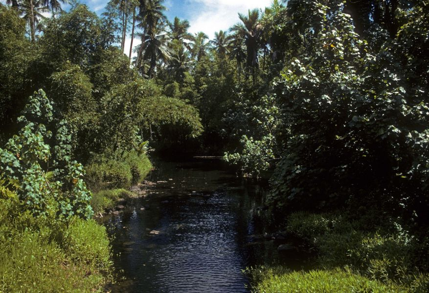 Pohnpei Island V63PJ DX News