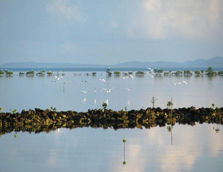 Polillo Island Polillo Islands DU1/JA1PBV Tourist attractions
