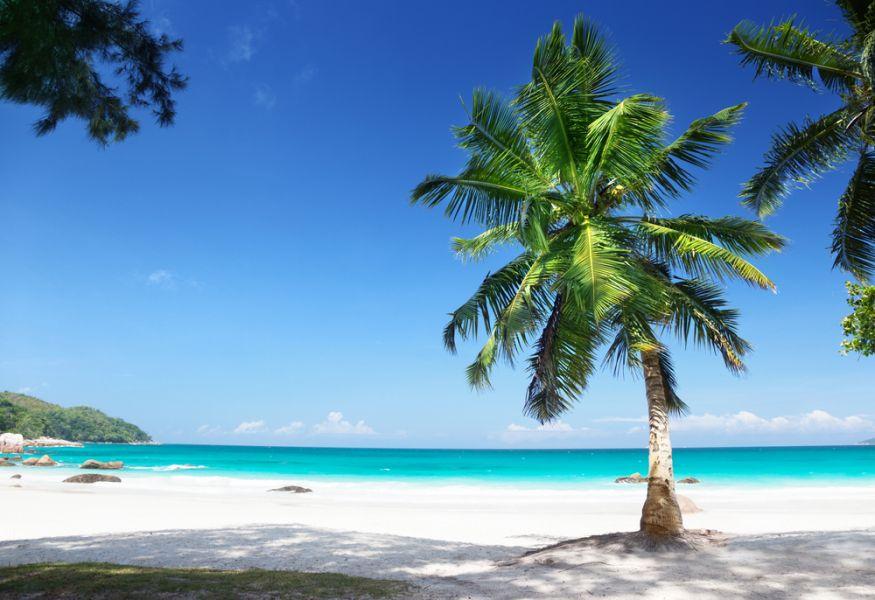 Остров Праслин S79EA Туристические достопримечательности Сейшельские острова