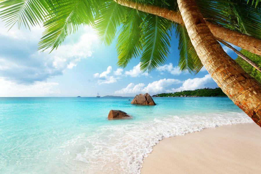Остров Праслин S79EA Сейшельские острова
