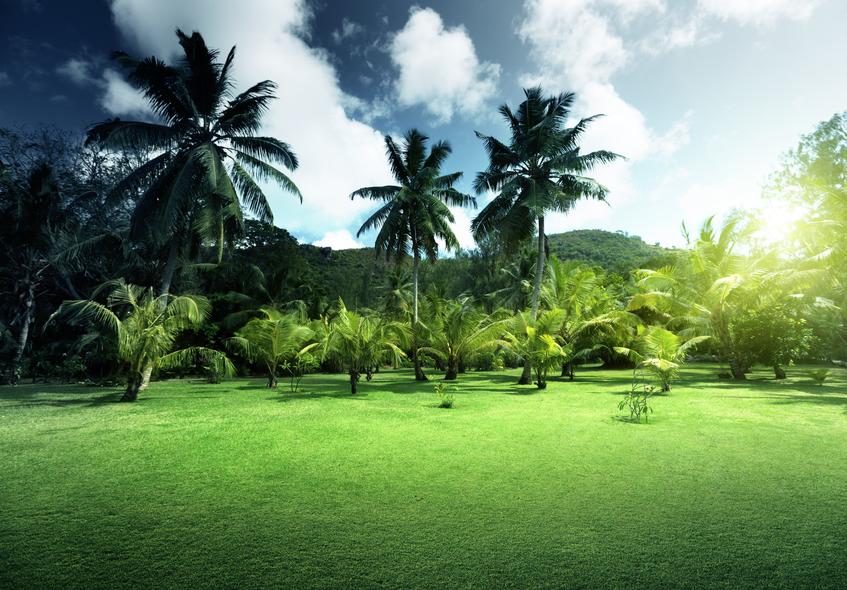 Praslin Island S79RPS Tourist attractions Seychelles
