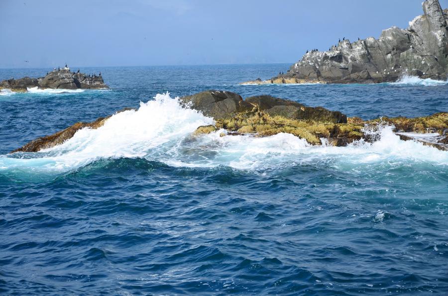 Ptichiy Island R23RRC DX News